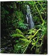 Waterfall, Sloughan Glen, Co Tyrone Canvas Print