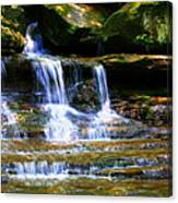 Waterfall Trio At Mcconnells Mill State Park Canvas Print