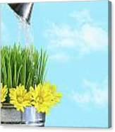Watering Flowers And Grass For Spring Canvas Print