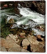 Waters Edge Glen Alpine Creek Canvas Print