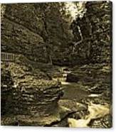 Watkins Glen In Orotone Canvas Print