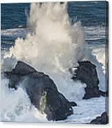 Wave Meets Seastack Canvas Print