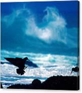 Wavedance Canvas Print