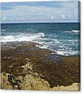 Waves Breaking On Shore 7930 Canvas Print
