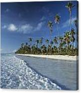 Waves Lapping Shore Of Beach With Palm Canvas Print