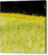 Waves Of Yellow Canvas Print