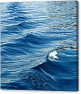 Waves On Tahoe Canvas Print