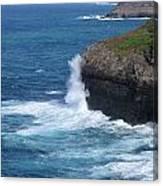 Waves On The Coast Canvas Print
