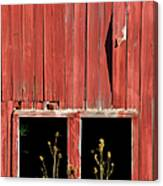 Weathered Red Barn Windows Of New Jersey Canvas Print
