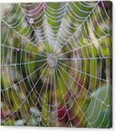 Web Design Canvas Print