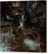 Web Glitter Canvas Print