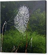 Web Over Foggy Lake Canvas Print