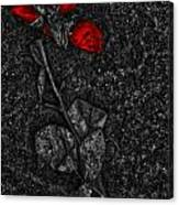 Weep Of A Rose  Canvas Print