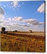 West Texas Cotton Harvest Canvas Print