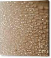 Wet Skin Canvas Print