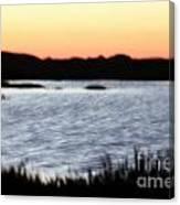 Wetland Canvas Print