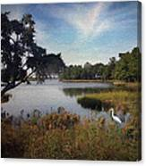 Wetlands - Oil Painting Effect Canvas Print