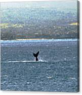 Whale Tail I Canvas Print