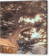 Whaler's Cabin Canvas Print