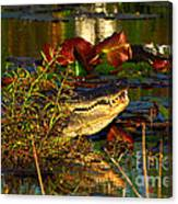 What Lurks On The Swamp Canvas Print