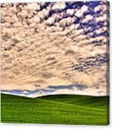 Wheat Field In The Palouse Canvas Print