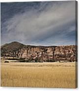 Wheatfield Zion National Park Canvas Print