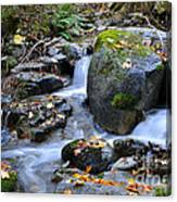 Whisketown Stream In Autumn Canvas Print