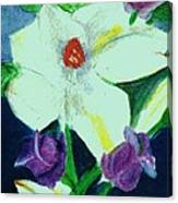 White And Purple Delight Canvas Print