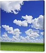White Clouds In The Sky And Green Meadow Canvas Print