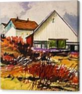 White Farm-spring Canvas Print