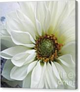 White Flower With Music Canvas Print