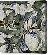 White Geraniums   -- Vangogh Canvas Print