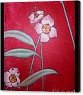 White Lotus Bottom  Canvas Print