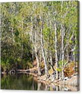 White Reflections Canvas Print