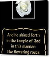 White Rose With Bible Verse From Sirach Canvas Print