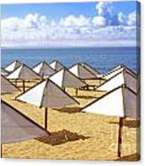 White Sunshades Canvas Print