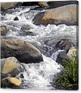 White Water Composition Canvas Print