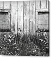 White Windows Canvas Print