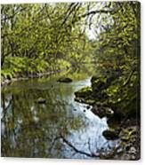 Whitewater River Spring 10 Canvas Print