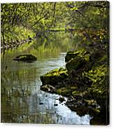 Whitewater River Spring 11 Canvas Print