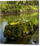 Whitewater River Spring 12 Canvas Print
