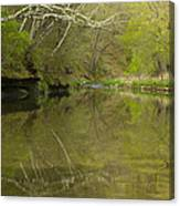 Whitewater River Spring 13 Canvas Print
