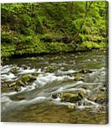 Whitewater River Spring 8 A Canvas Print