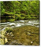 Whitewater River Spring 8 C Canvas Print