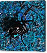 Wicked Widow - Blue Canvas Print