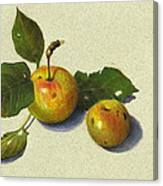 Wild Apples In Color Pencil Canvas Print