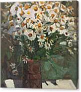 Wild Chamomile Canvas Print