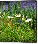 Wild Grow Canvas Print