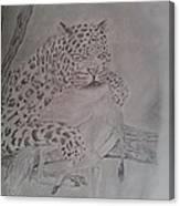 Wild Predator Canvas Print