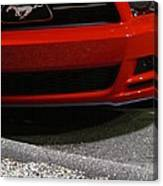 Wild Red Mustang Canvas Print